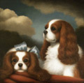 Inseparable <br>Two Cavalier King Charles Spaniels