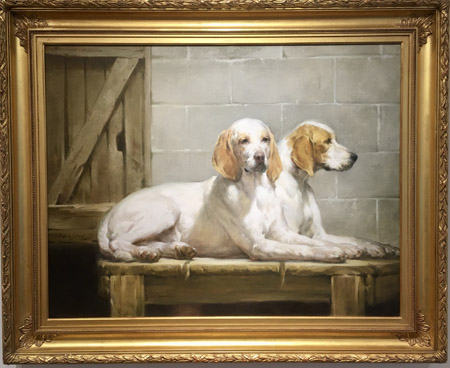 Foxhounds in a Kennel